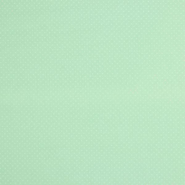 Baumwollpopeline Minipunkte mint