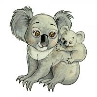 Safuri Bügelbild Koala