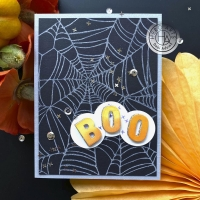 Hero Arts Cling Stamp Background SPIDER WEB