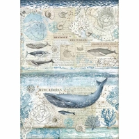 Stamperia Reispapier A3 History Of The Whale