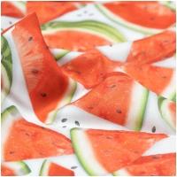 Baumwolle Chow Time Wassermelonen gross