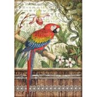 Stamperia Reispapier A4 Amazonia Parrot