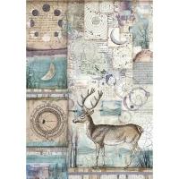 Stamperia Reispapier A4 Cosmos Deer