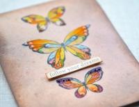 Birch Press Design - Lovely Butterflies Stamp & Die Set