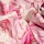 Baumwolle Fusion II WAVE Pink